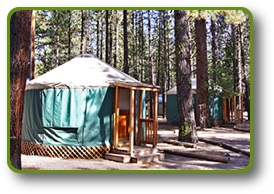 Cozy Hat Creek Resort Yurts